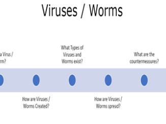 Viruses and Worms theory