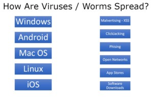 how virus spread